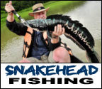 Mega Fishing Thailand guided fishing trips in Chiang mai for the Giant snakehead (Channa micropeltes) fishing package title image graphic
