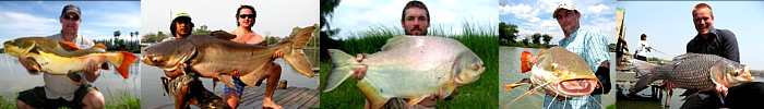 Photos of Fishing in Thailand Giant catfish, Carp, Pacu and Redtail catfish