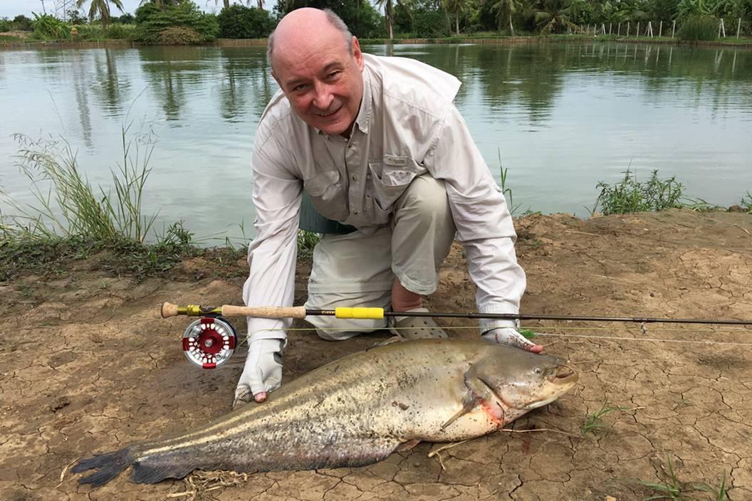 Wallago leeri caught  fly fishing in Thaialnd at Ratchaburi Predator lake